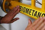 Il Coordinamento Ambiente Tuscia a favore dell'impianto per la produzione di Biometano a Tarquinia