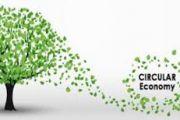 L'Economia Circolare e la Rivoluzione Sostenibile