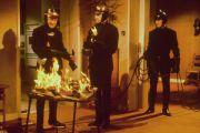 """""""Quer pasticciaccio brutto…"""" dei libri della Biblioteca Comunale di Tarquinia mandati al macero che assomiglia a """"Fahrenheit 451"""""""